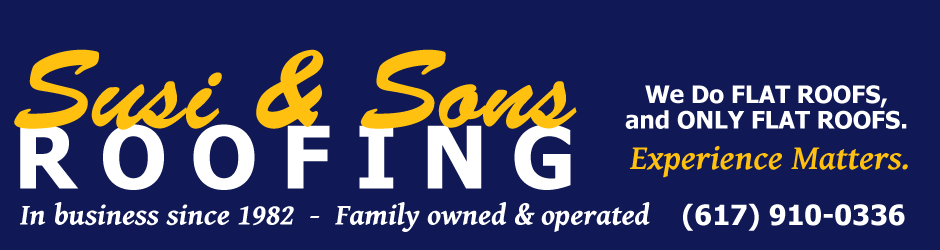Susi & Sons Roofing